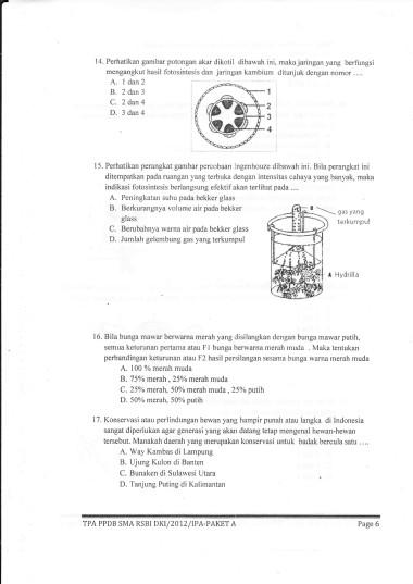 IMG_page6_image1