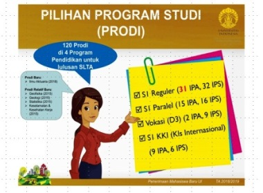 pilihan program studi ui